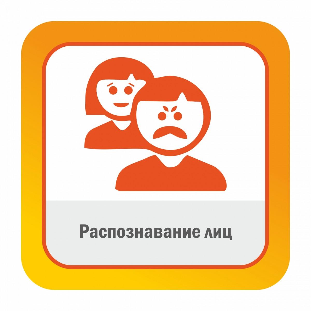 Распознавание лиц Satvision